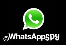 logo whatsapp spy